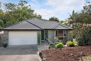 19 Nottinghill Place, Oxenford, Qld 4210
