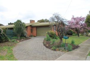 26 Dougherty Street, Horsham, Vic 3400