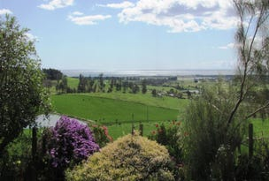 71 Nourses Road, Bridport, Tas 7262