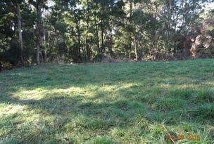 . Tippetts Road, Mount Hicks, Tas 7325
