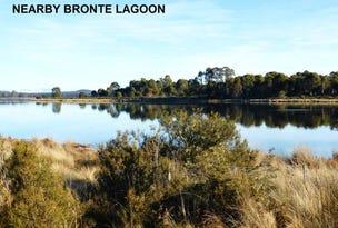 25 Bronte Estate Road, Bronte Park, Tas 7140