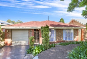9 Langer Court, Fairview Park, SA 5126