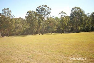 2 Magpie Place, Yarravel, NSW 2440