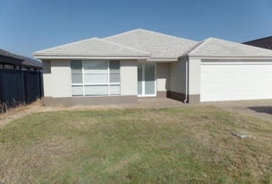 19 Tigereye Avenue, Byford, WA 6122