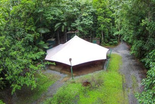 Lot 157 Cape Tribulation Road DIWAN, Daintree, Qld 4873