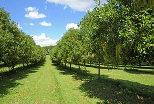 58 Candle Mountain Drive, Peachester, Qld 4519