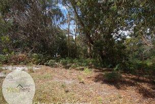 58 North Ansons Road, Ansons Bay, Tas 7264