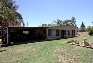 762 Chowilla Street, Renmark, SA 5341