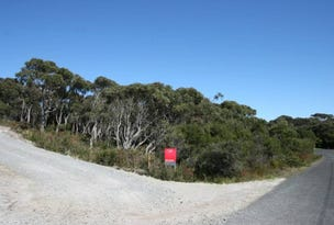 69 Amaroo Drive, Edgcumbe Beach, Tas 7321