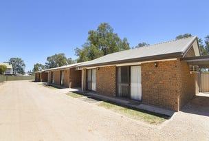 Units 1-5/39B Wentworth Street, Wentworth, NSW 2648