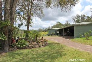 Lot 91 Tamban Road, Collombatti, NSW 2440