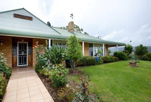 53  Squires Rd, Wootton, NSW 2423
