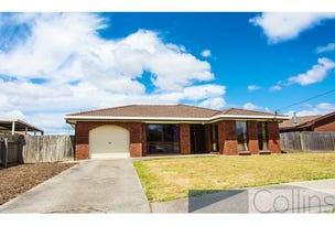 2 Dahlia Court, Devonport, Tas 7310