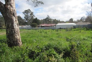 Lot 43, Langbein Ave, Woodside, SA 5244