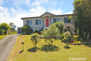 5 Harold Hughes Place, Greenhill, NSW 2440