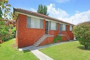 67 Jane Avenue, Warrawong, NSW 2502