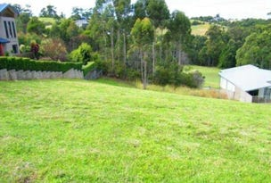 Lot 103, 55  Hilltop Parkway, Tallwoods Village, NSW 2430