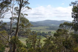 301 Woodsdale Back Road, Woodsdale, Tas 7120