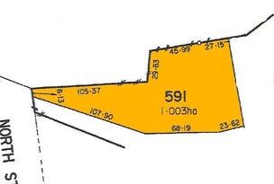 Lot 591, 65 North Street, Angaston, SA 5353