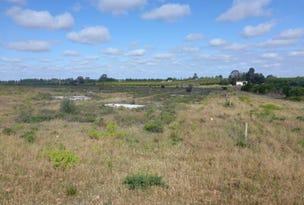 Lots 116 and 123 Butterworth Road, Waikerie, SA 5330