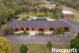 17 Maywood Road, Cranbourne South, Vic 3977