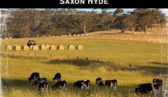 Meadows, SA 5201