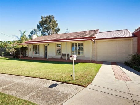 23 Douglas Street, Lockleys, SA 5032