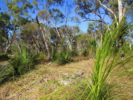 Agnes Water, Qld 4677