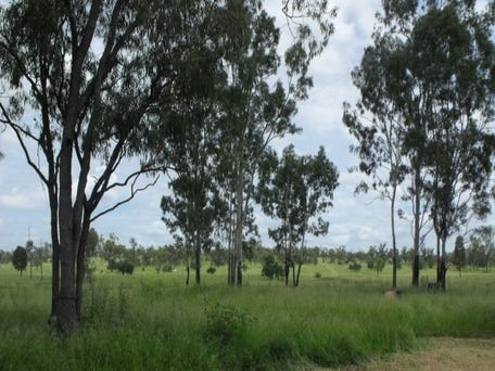 Property For Sale Collinsville Qld