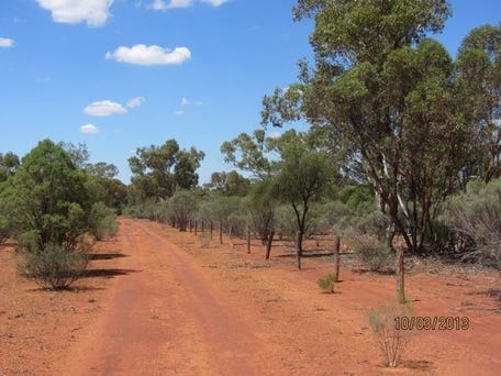 Top 35 Graziers in Bundella, NSW 2343   Yellow Pages®