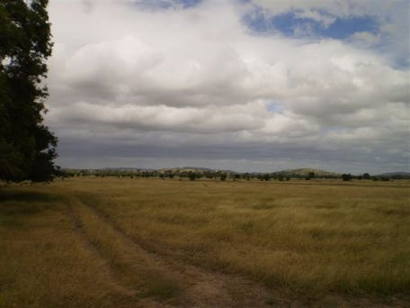 Lot Pink Lilly, Rockhampton City, Qld 4700
