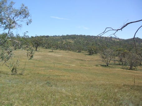 Lot 7 Mount Forest Road, Carlaminda, NSW 2630