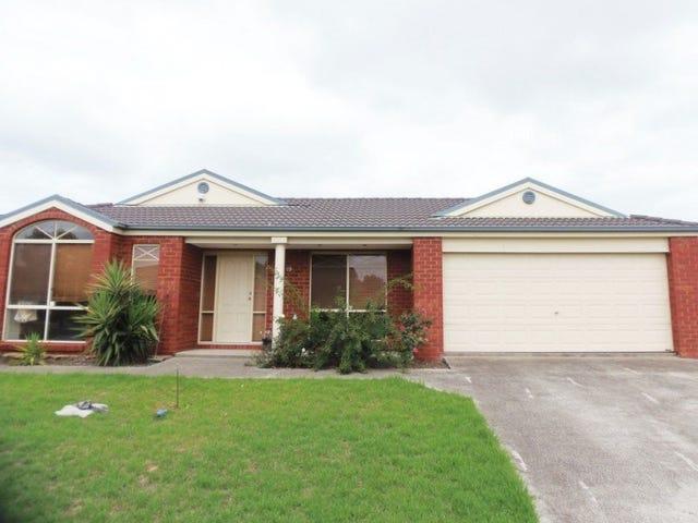 19 Springfield Close, Caroline Springs, Vic 3023