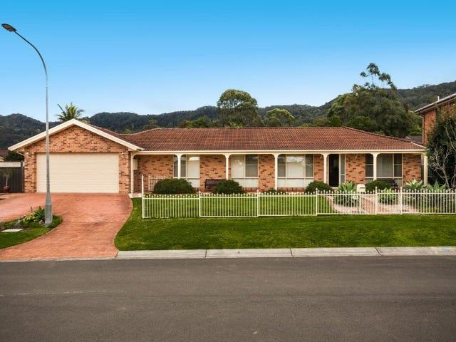 39 Hutchinson Drive, Balgownie, NSW 2519