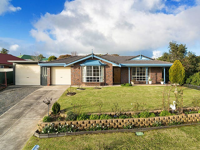 6 Michelmore Drive, Meadows, SA 5201
