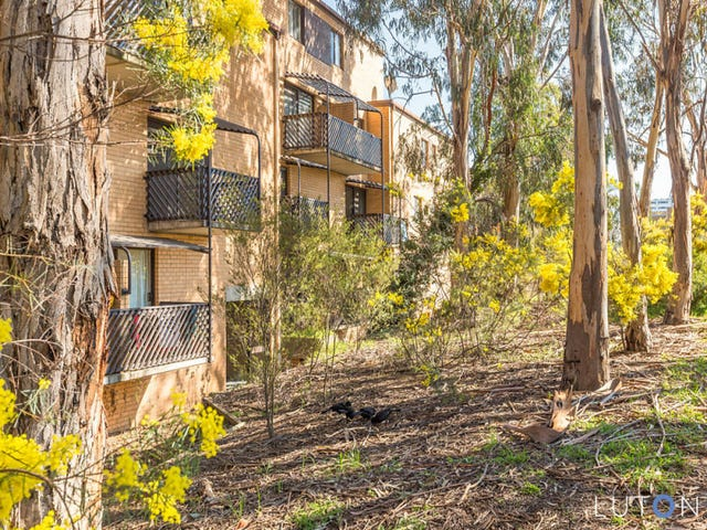 14/31 Disney Court, Belconnen, ACT 2617
