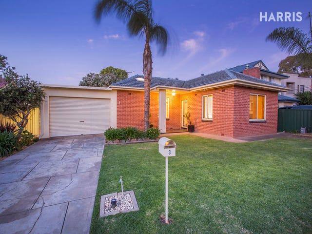 3 Simmons Crescent, Flinders Park, SA 5025