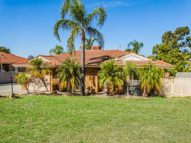 16 Galsworthy Place, Spearwood, WA 6163