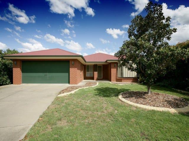 14 Delvin Place, Kooringal, NSW 2650