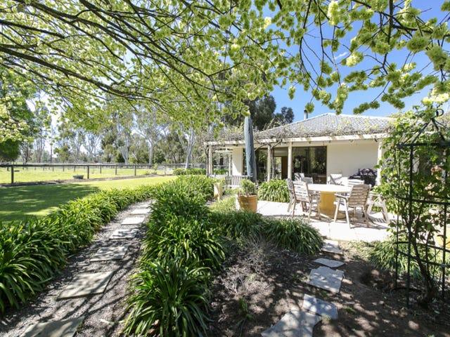 799 Dashwood Gully Road, Meadows, SA 5201