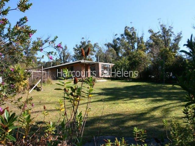 20 Cleland Drive, St Helens, Tas 7216