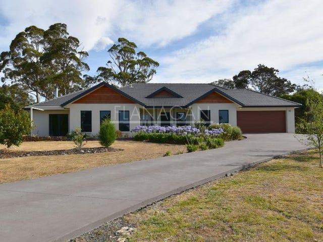 2a Pine Tree Avenue, Grindelwald, Tas 7277