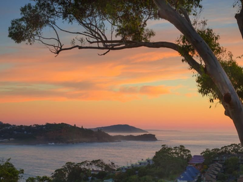 19 Fairscene Crescent, Avoca Beach, NSW 2251