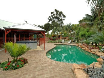 In-ground pool design using grass with pool fence & rockery - Pool photo 468583