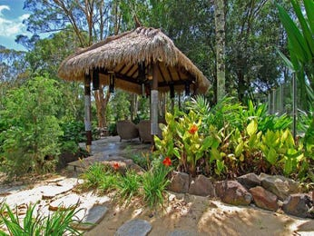 Photo of a tropical garden design from a real Australian home - Gardens photo 1448152