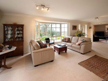 Beige living room idea from a real Australian home - Living Area photo 1080834