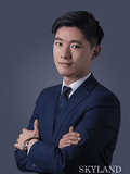 Song Zhu, SKYLAND REAL ESTATE