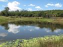 86 Holdings, Koonorigan, NSW 2480