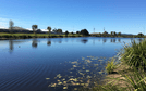 Lot 139, 17 Dorothy Place, Mirani, Qld 4754