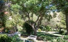 24 Lillian Nuffield Court, Castle Hill, NSW 2154